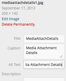 Media Attachment Details