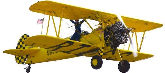 8575 Wing Walker